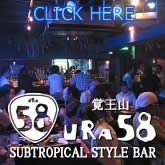 SUBTROPICAL STYLE BAR URA58